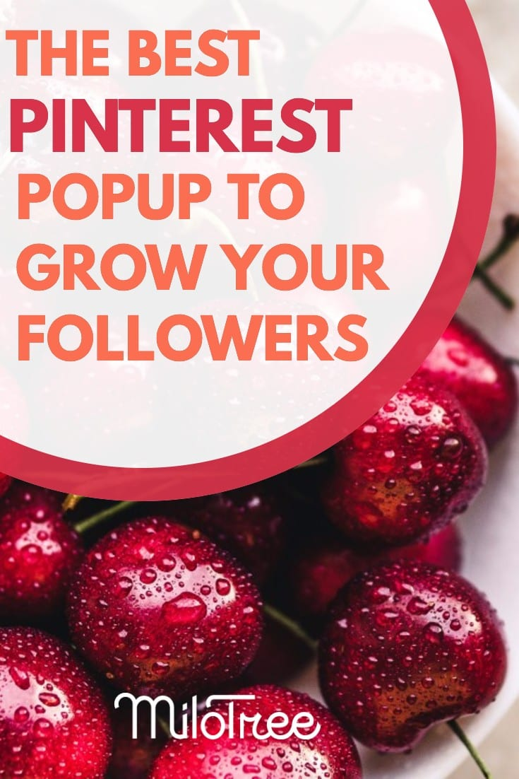 The Best Pinterest Popup Plugin To Grow Your Followers | MiloTree.com