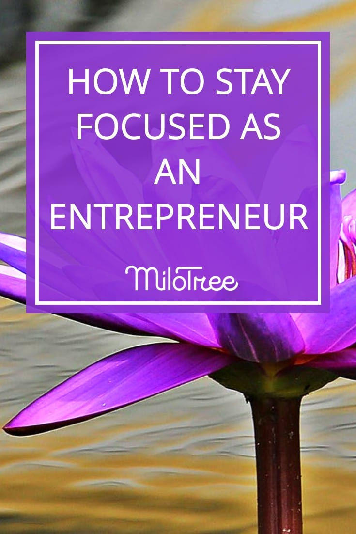 How to Stay Focused as an Entrepreneur | MiloTree.com